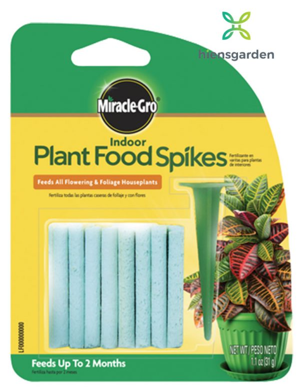Que dinh dưỡng cho cây trồng Indoor Plant Food Spikes (Mỹ)